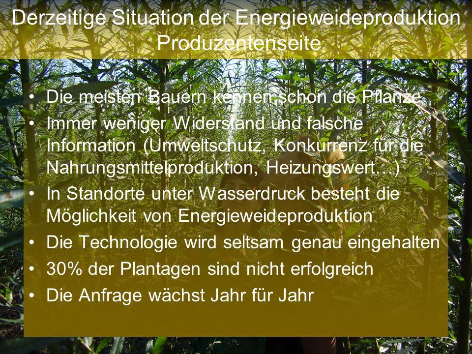 Derzeitige Situation der Energieweideproduktion Produzentenseite Die meisten Bauern kennen schon die Pflanze Immer weniger Widerstand und falsche Info
