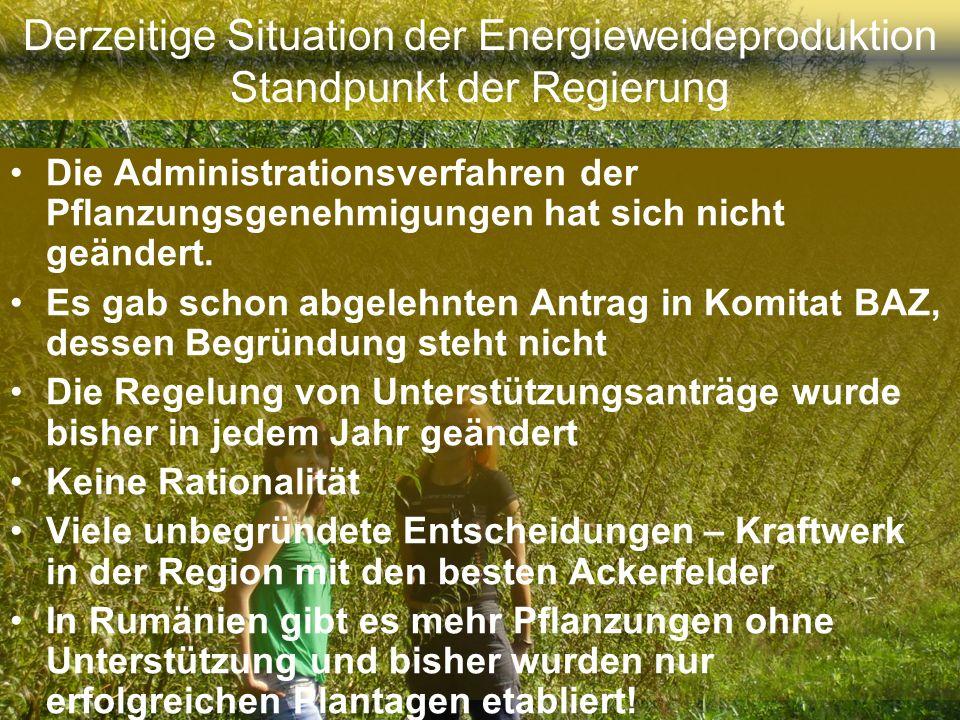 Derzeitige Situation der Energieweideproduktion Standpunkt der Regierung Die Administrationsverfahren der Pflanzungsgenehmigungen hat sich nicht geänd