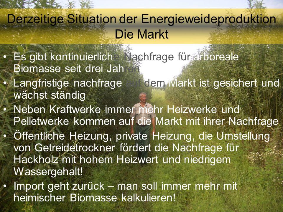 Derzeitige Situation der Energieweideproduktion Die Markt Es gibt kontinuierliche Nachfrage für arboreale Biomasse seit drei Jahren Langfristige nachf