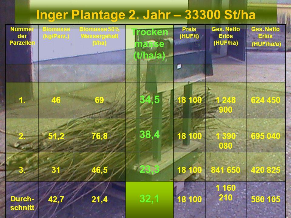 Inger Plantage 2. Jahr – 33300 St/ha Nummer der Parzellen Biomasse (kg/Parz.) Biomasse 50% Wassergehalt (t/ha) Trocken masse (t/ha/a) Preis (HUF/t) Ge