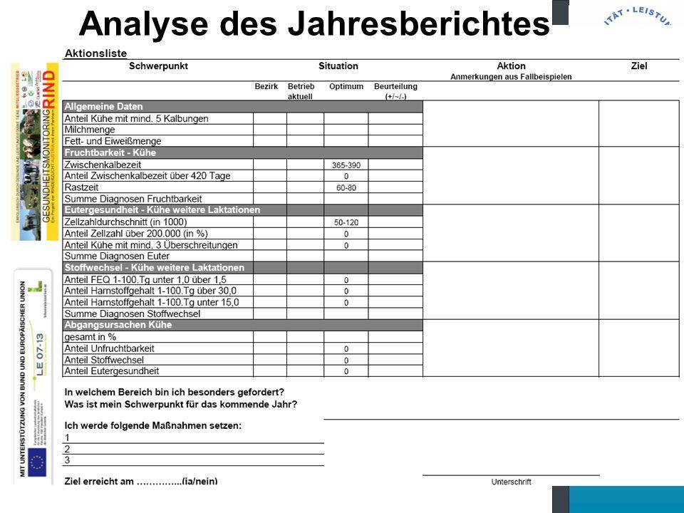 Analyse des Jahresberichtes