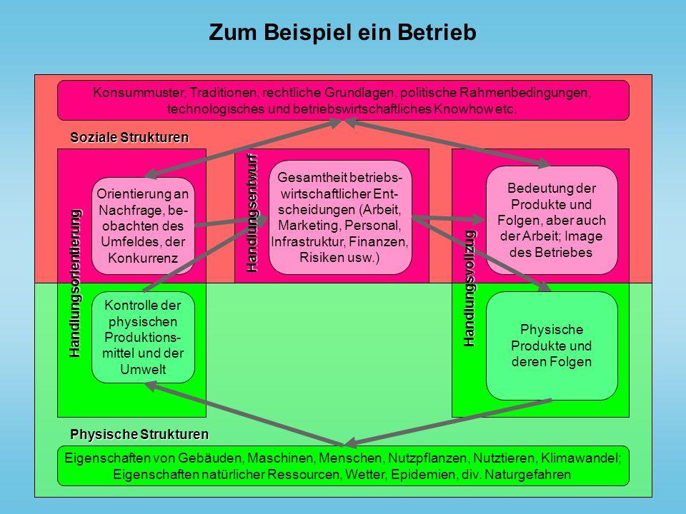 Zum Beispiel ein Betrieb Soziale Strukturen Konsummuster, Traditionen, rechtliche Grundlagen, politische Rahmenbedingungen, technologisches und betrie