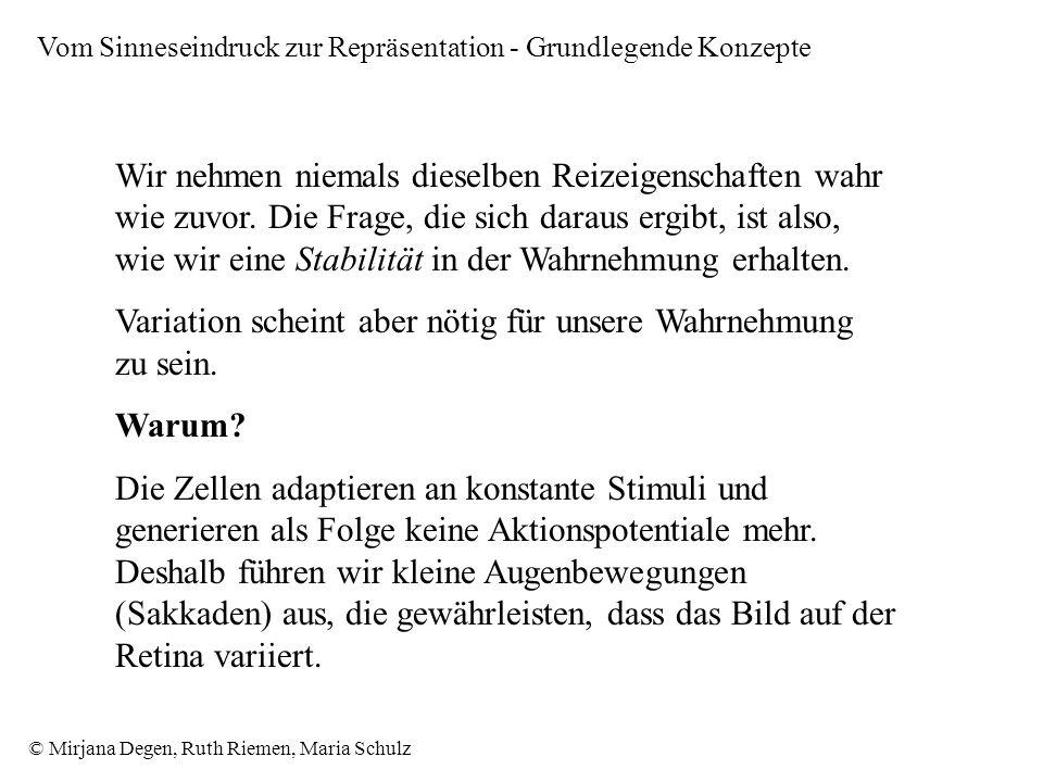 © Mirjana Degen, Ruth Riemen, Maria Schulz Wir nehmen niemals dieselben Reizeigenschaften wahr wie zuvor.