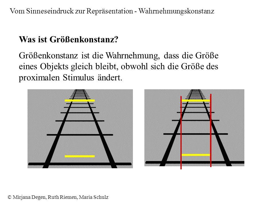 © Mirjana Degen, Ruth Riemen, Maria Schulz Vom Sinneseindruck zur Repräsentation - Wahrnehmungskonstanz Was ist Größenkonstanz.
