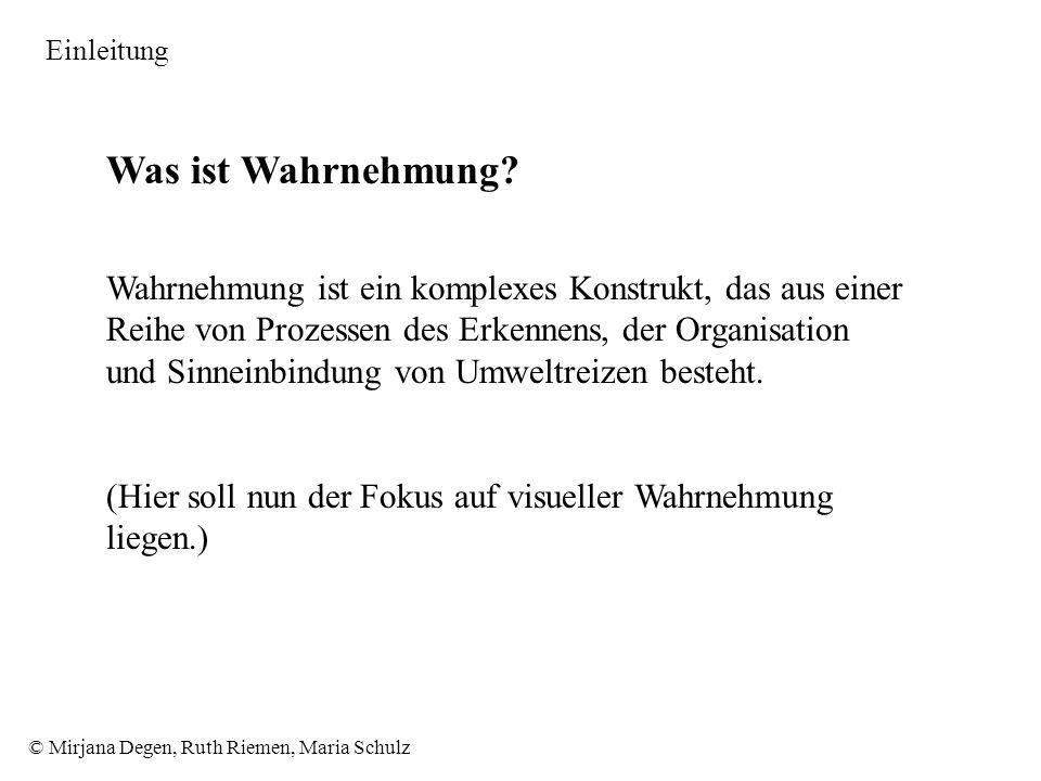 © Mirjana Degen, Ruth Riemen, Maria Schulz Was ist Wahrnehmung.