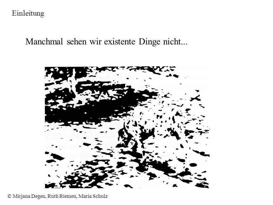 © Mirjana Degen, Ruth Riemen, Maria Schulz Manchmal sehen wir existente Dinge nicht... Einleitung