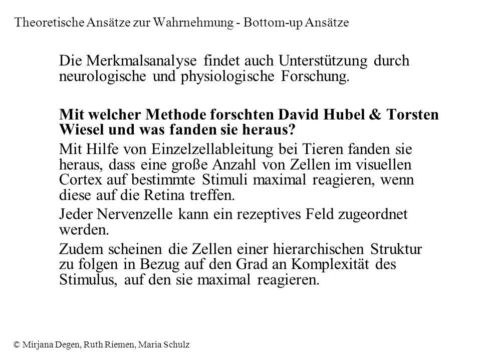 © Mirjana Degen, Ruth Riemen, Maria Schulz Die Merkmalsanalyse findet auch Unterstützung durch neurologische und physiologische Forschung.