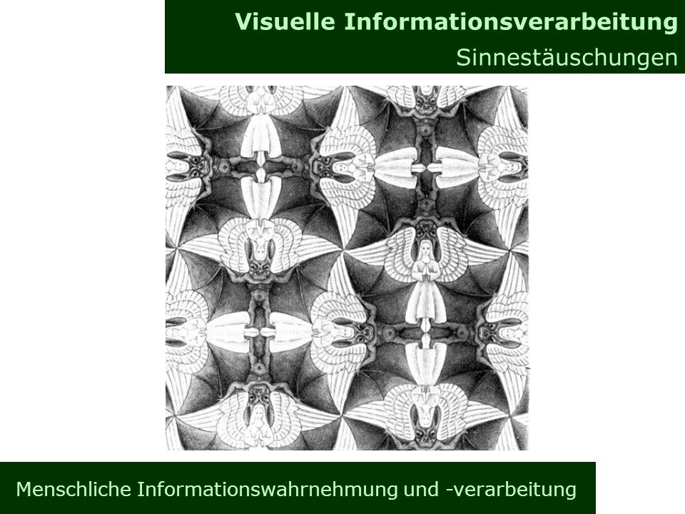 Menschliche Informationswahrnehmung und -verarbeitung Informationsverarbeitung im Gehirn Allgemeines Visuelle Informationsverarbeitung Sinnestäuschungen