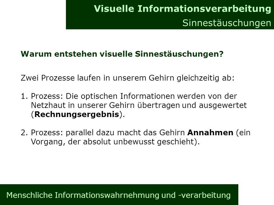 Menschliche Informationswahrnehmung und -verarbeitung Informationsverarbeitung im Gehirn Allgemeines Visuelle Informationsverarbeitung Sinnestäuschungen Warum entstehen visuelle Sinnestäuschungen.