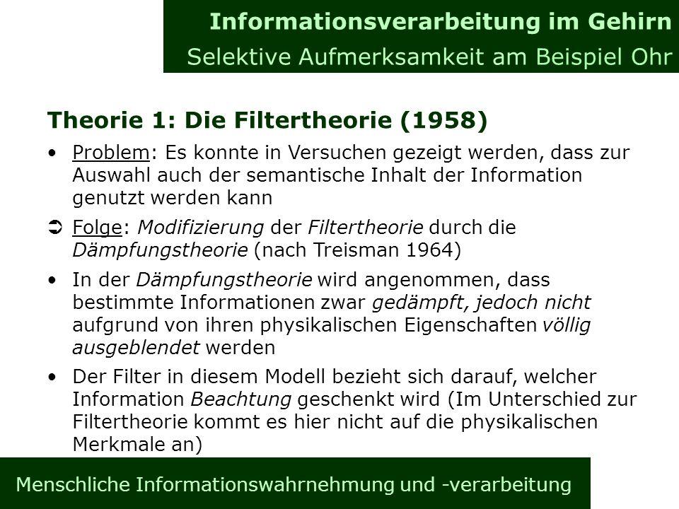 Menschliche Informationswahrnehmung und -verarbeitung Theorie 1: Die Filtertheorie (1958) Problem: Es konnte in Versuchen gezeigt werden, dass zur Auswahl auch der semantische Inhalt der Information genutzt werden kann Ü Folge: Modifizierung der Filtertheorie durch die Dämpfungstheorie (nach Treisman 1964) In der Dämpfungstheorie wird angenommen, dass bestimmte Informationen zwar gedämpft, jedoch nicht aufgrund von ihren physikalischen Eigenschaften völlig ausgeblendet werden Der Filter in diesem Modell bezieht sich darauf, welcher Information Beachtung geschenkt wird (Im Unterschied zur Filtertheorie kommt es hier nicht auf die physikalischen Merkmale an) Informationsverarbeitung im Gehirn Allgemeines Informationsverarbeitung im Gehirn Selektive Aufmerksamkeit am Beispiel Ohr
