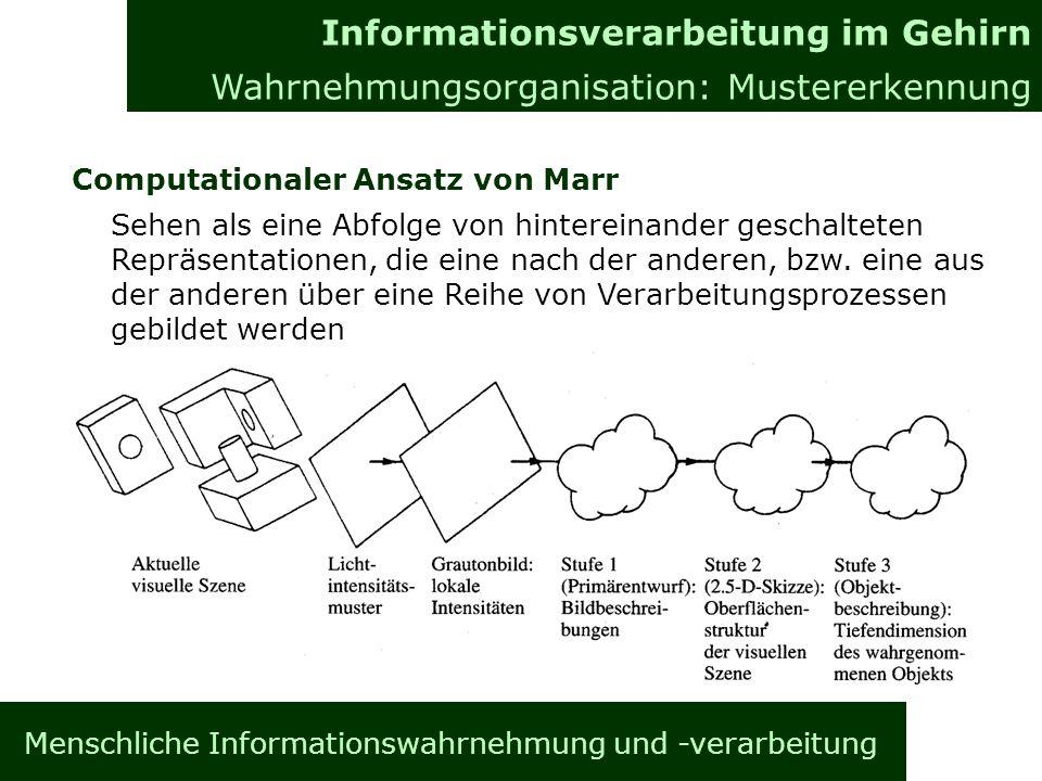 Menschliche Informationswahrnehmung und -verarbeitung Computationaler Ansatz von Marr Sehen als eine Abfolge von hintereinander geschalteten Repräsentationen, die eine nach der anderen, bzw.