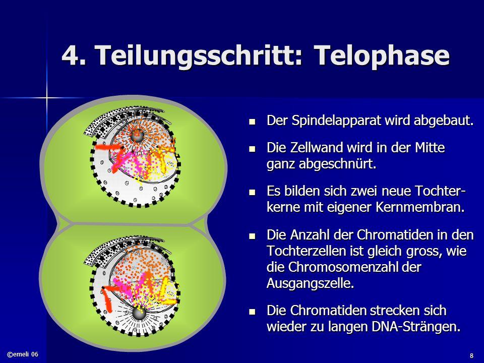 ©emeli 06 8 4. Teilungsschritt: Telophase Der Spindelapparat wird abgebaut. Der Spindelapparat wird abgebaut. Die Zellwand wird in der Mitte ganz abge