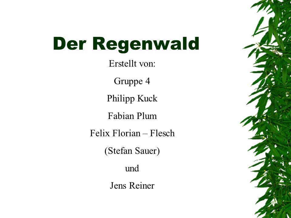 Der Regenwald Erstellt von: Gruppe 4 Philipp Kuck Fabian Plum Felix Florian – Flesch (Stefan Sauer) und Jens Reiner