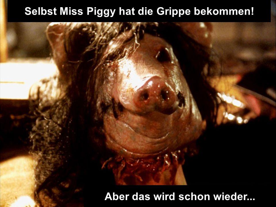 Selbst Miss Piggy hat die Grippe bekommen! Aber das wird schon wieder...
