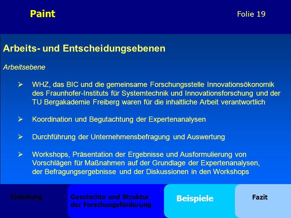Folie 19 Arbeits- und Entscheidungsebenen Arbeitsebene WHZ, das BIC und die gemeinsame Forschungsstelle Innovationsökonomik des Fraunhofer-Instituts f