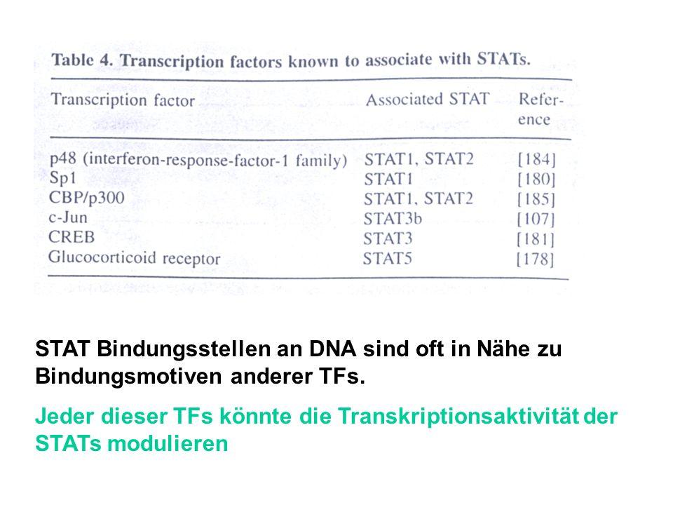 STAT Bindungsstellen an DNA sind oft in Nähe zu Bindungsmotiven anderer TFs. Jeder dieser TFs könnte die Transkriptionsaktivität der STATs modulieren