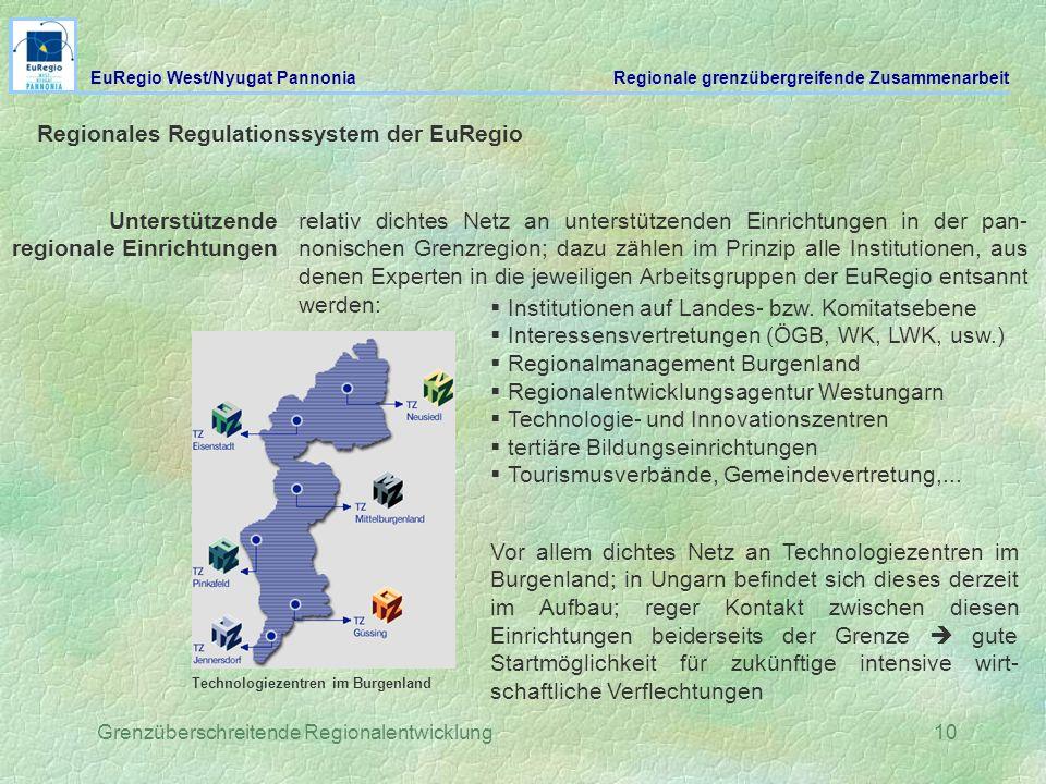 Grenzüberschreitende Regionalentwicklung10 Regionales Regulationssystem der EuRegio Unterstützende regionale Einrichtungen relativ dichtes Netz an unt