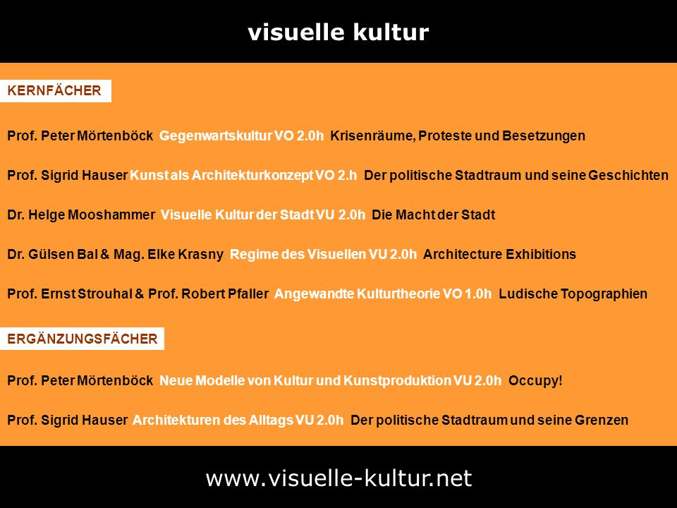 visuelle kultur www.visuelle-kultur.net Prof. Peter Mörtenböck Gegenwartskultur VO 2.0h Krisenräume, Proteste und Besetzungen Prof. Sigrid Hauser Kuns