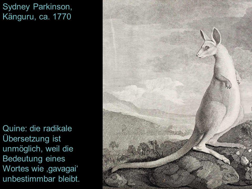 Sydney Parkinson, Känguru, ca. 1770 Quine: die radikale Übersetzung ist unmöglich, weil die Bedeutung eines Wortes wie gavagai unbestimmbar bleibt.