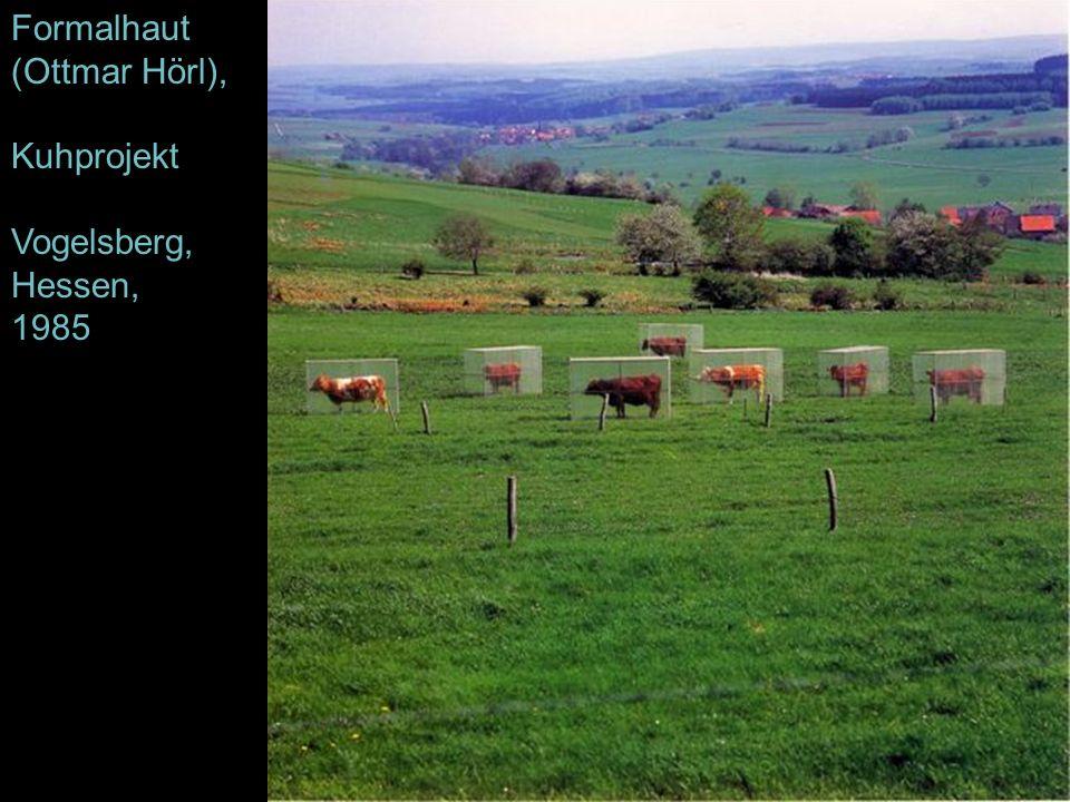 Formalhaut (Ottmar Hörl), Kuhprojekt Vogelsberg, Hessen, 1985