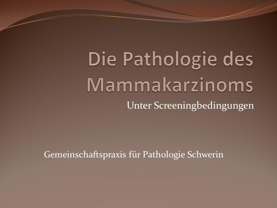 Unter Screeningbedingungen Gemeinschaftspraxis für Pathologie Schwerin