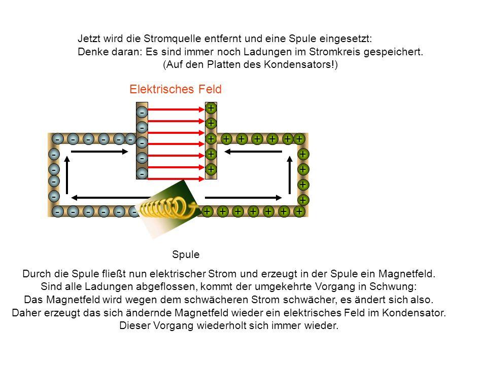 Jetzt wird die Stromquelle entfernt und eine Spule eingesetzt: Denke daran: Es sind immer noch Ladungen im Stromkreis gespeichert. (Auf den Platten de