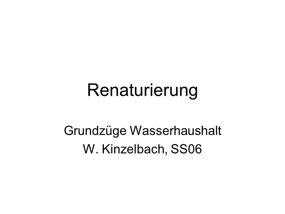 Renaturierung Grundzüge Wasserhaushalt W. Kinzelbach, SS06