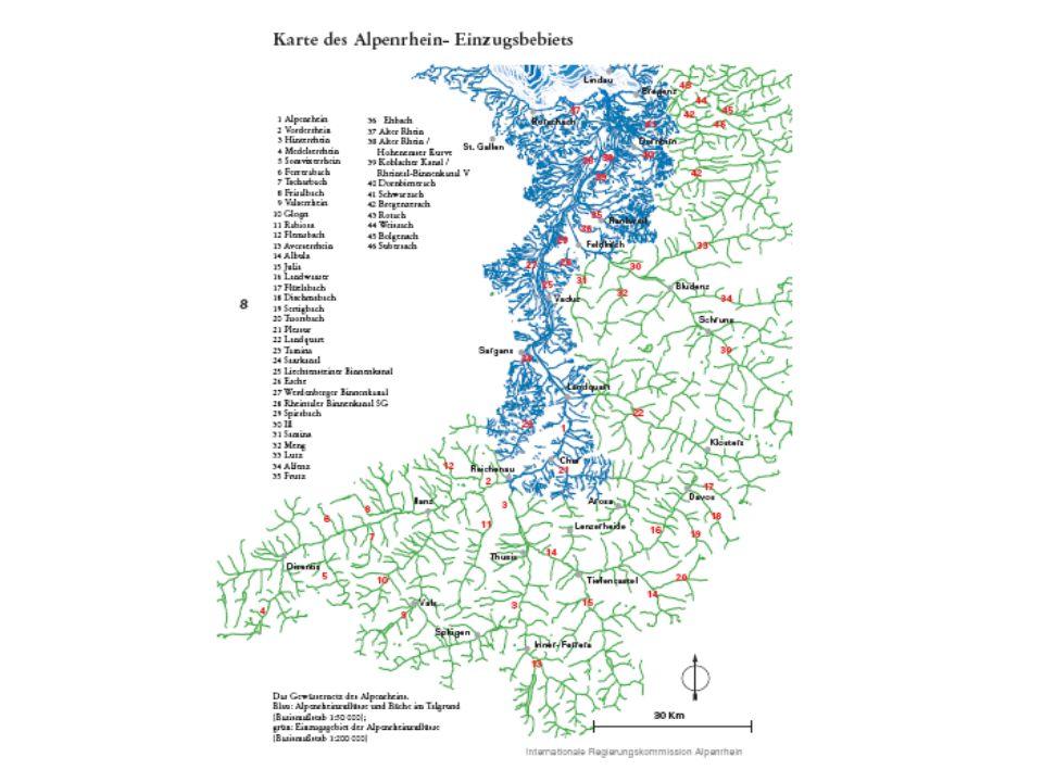 Probleme des Alpenrheins –Massive Beeinträchtigung der ökologischen Funktionsfähigkeit –Mangel an struktureller Vielfalt und Habitaten –Verlust an Feuchtgebieten und Giessbächen –Verlust an Selbstreinigungskraft –Verlust an Artenvielfalt –Beeinträchtigung von Landschaftsbild und Erholungswert