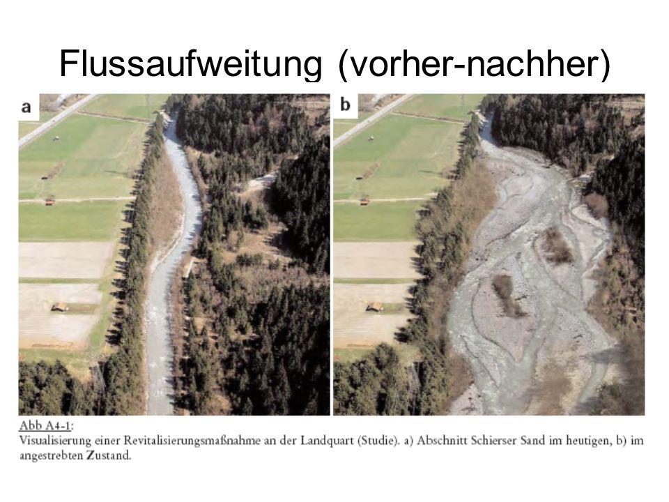 Flussaufweitung (vorher-nachher)