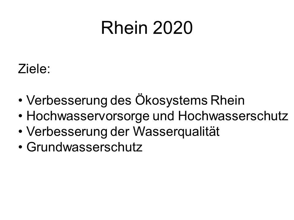 Rhein 2020 Ziele: Verbesserung des Ökosystems Rhein Hochwasservorsorge und Hochwasserschutz Verbesserung der Wasserqualität Grundwasserschutz