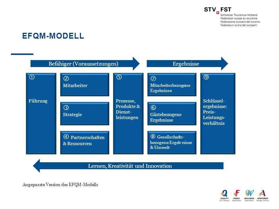 EFQM-MODELL Angepasste Version des EFQM-Modells Führung Mitarbeiter Strategie Partnerschaften & Ressourcen Prozesse, Produkte & Dienst- leistungen Mit