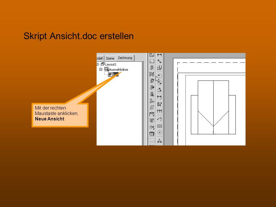 Skript Ansicht.doc erstellen Mit der rechten Maustaste anklicken, Neue Ansicht