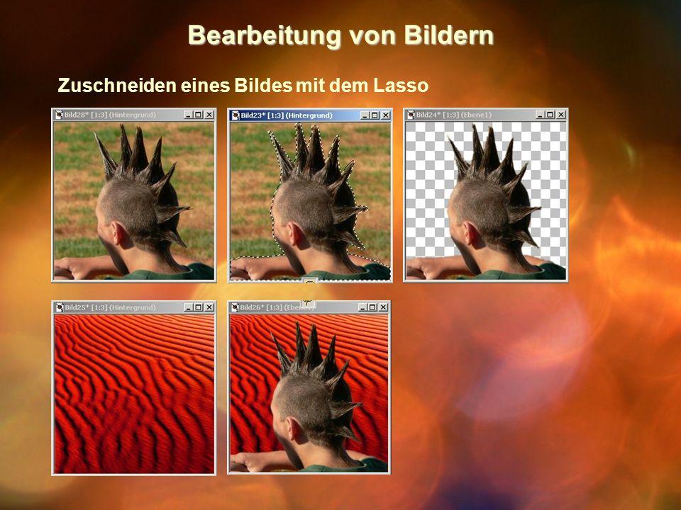 Bearbeitung von Bildern Zuschneiden eines Bildes mit dem Lasso