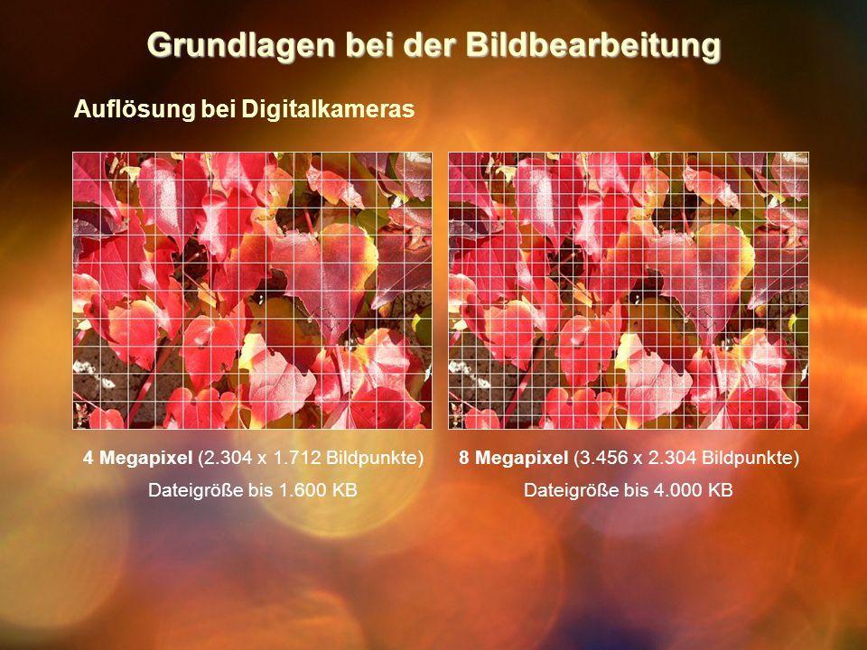Grundlagen bei der Bildbearbeitung Auflösung bei Digitalkameras 4 Megapixel (2.304 x 1.712 Bildpunkte) Dateigröße bis 1.600 KB 8 Megapixel (3.456 x 2.304 Bildpunkte) Dateigröße bis 4.000 KB