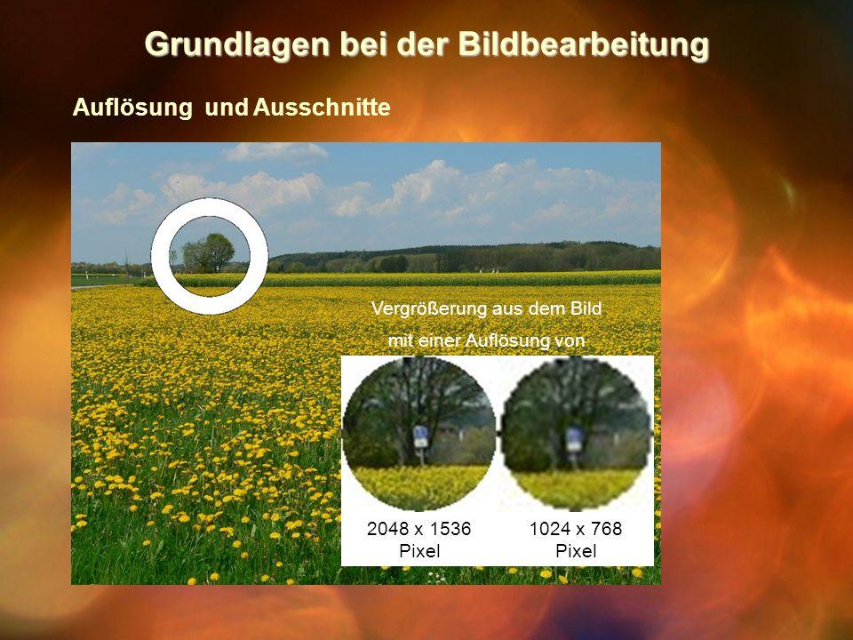 Grundlagen bei der Bildbearbeitung Auflösung und Ausschnitte Vergrößerung aus dem Bild mit einer Auflösung von 2048 x 1536 Pixel 1024 x 768 Pixel