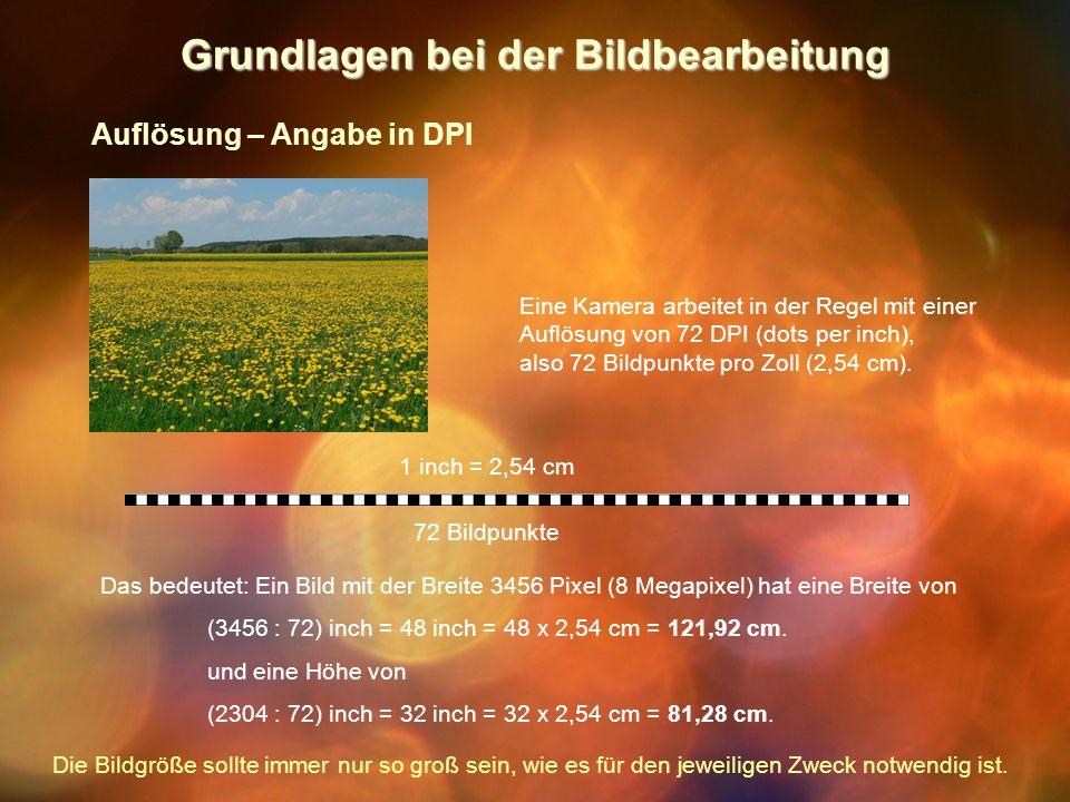 Grundlagen bei der Bildbearbeitung Auflösung – Angabe in DPI Eine Kamera arbeitet in der Regel mit einer Auflösung von 72 DPI (dots per inch), also 72 Bildpunkte pro Zoll (2,54 cm).
