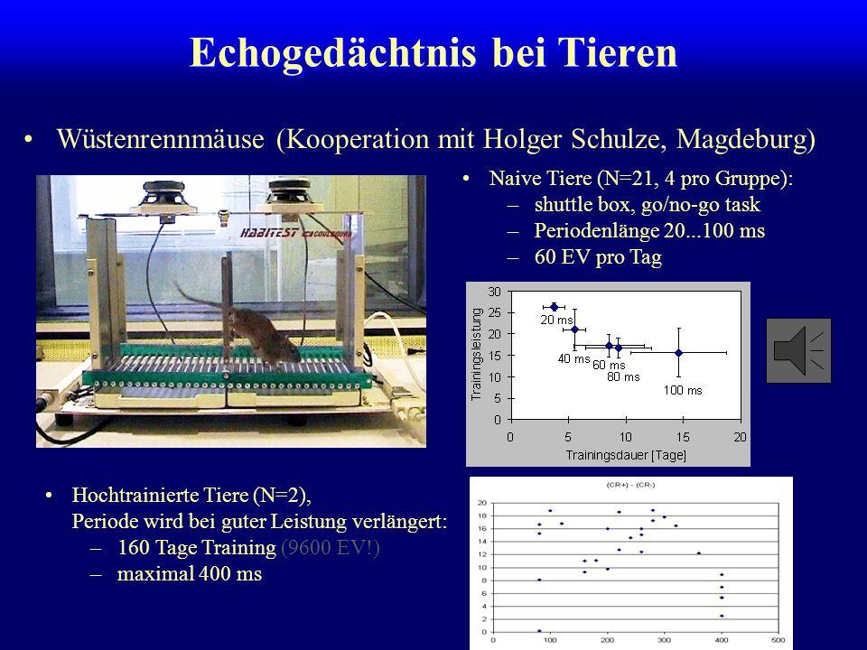 Mechanismen des Echogedächtnisses Versuch, Perioden mit hochsignifikanten Segmenten zu füllen, scheitert. Kapazität: 3 Segmente Gegenseitige Hemmung k