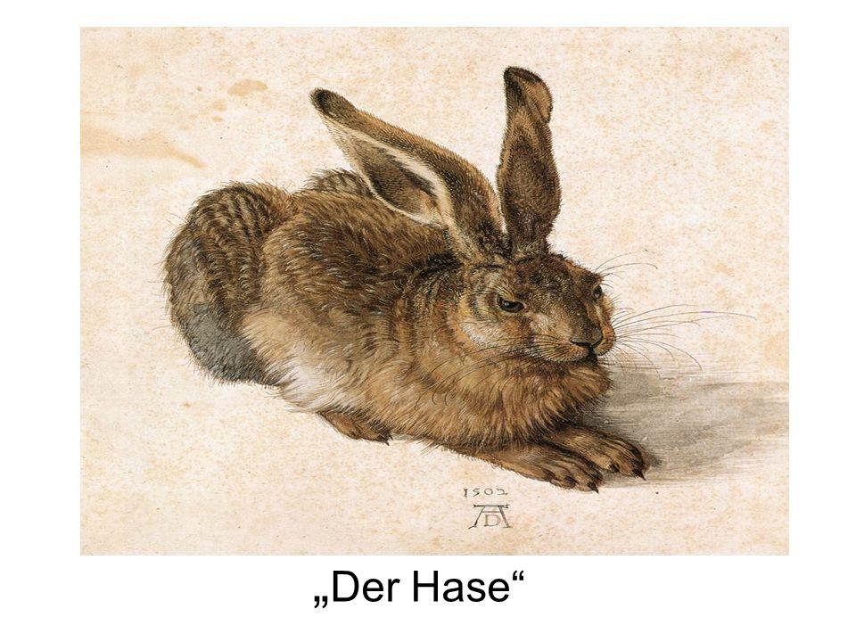 Der Hase