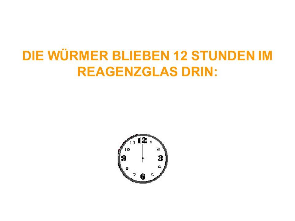 DIE WÜRMER BLIEBEN 12 STUNDEN IM REAGENZGLAS DRIN: