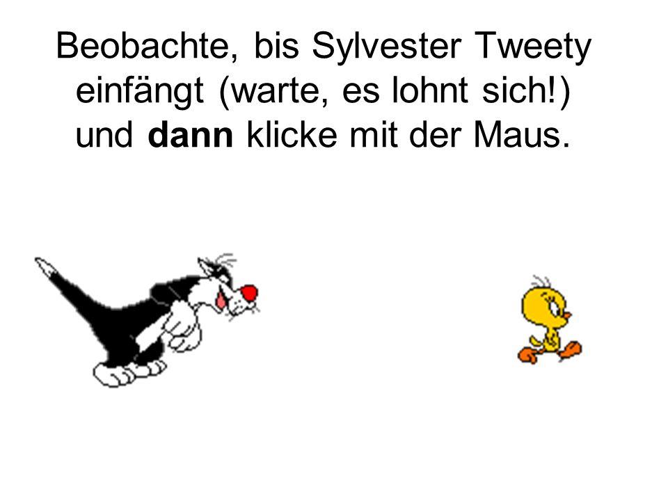 Beobachte, bis Sylvester Tweety einfängt (warte, es lohnt sich!) und dann klicke mit der Maus.