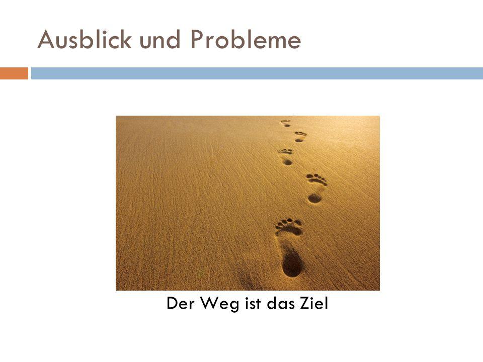 Ausblick und Probleme Der Weg ist das Ziel