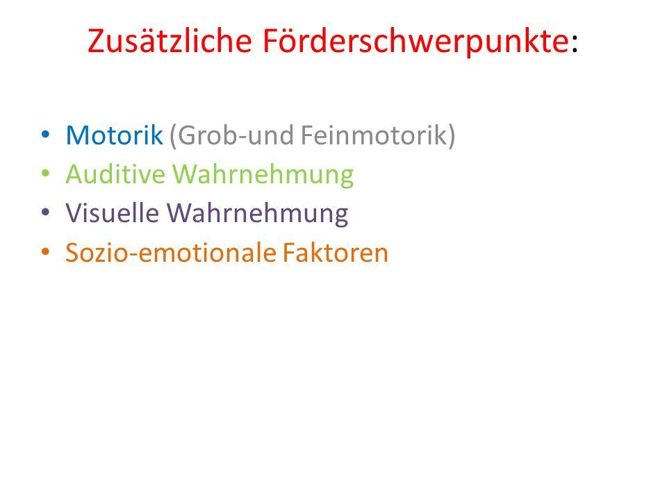 Zusätzliche Förderschwerpunkte: Motorik (Grob-und Feinmotorik) Auditive Wahrnehmung Visuelle Wahrnehmung Sozio-emotionale Faktoren