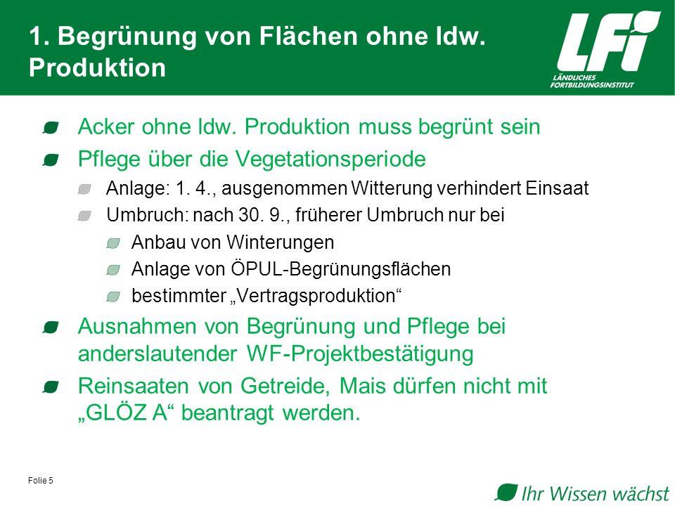 Folie 5 1.Begrünung von Flächen ohne ldw. Produktion Acker ohne ldw.