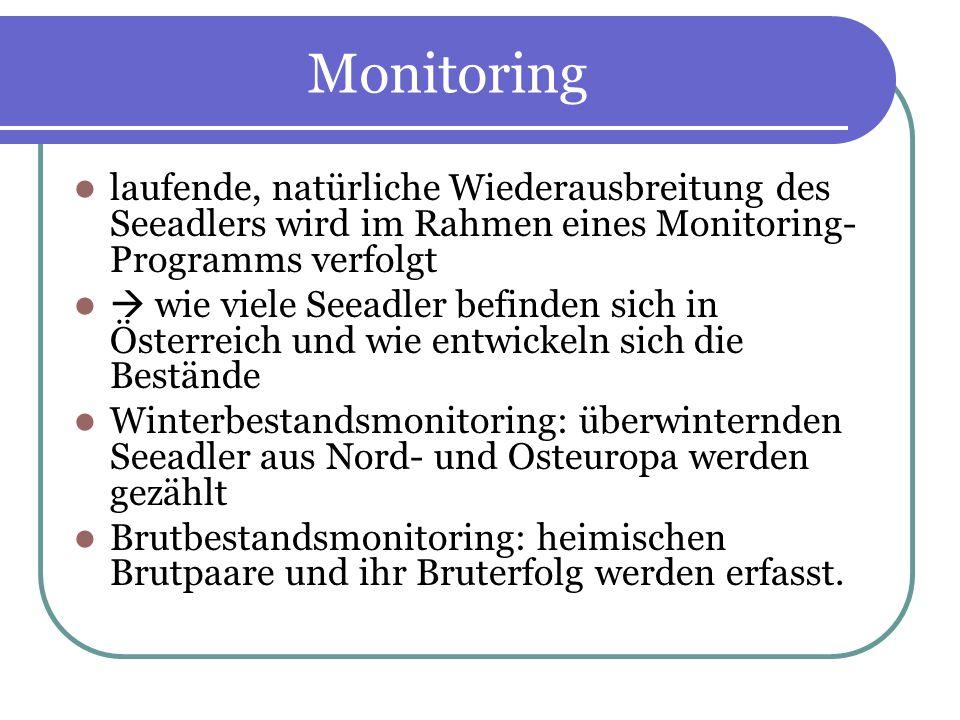 Monitoring laufende, natürliche Wiederausbreitung des Seeadlers wird im Rahmen eines Monitoring- Programms verfolgt wie viele Seeadler befinden sich i