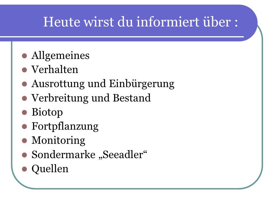 Quellen http://www.projektgruppeseeadlerschutz.de/ http://www.natur- lexikon.com/Texte/SM/001/00005- seeadler/SM00005.html http://www.wwf.at/de/menu80/artikel96/ http://www.hundezeitung.de/typen/greif6.html