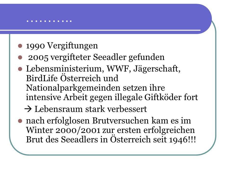 ……….. 1990 Vergiftungen 2005 vergifteter Seeadler gefunden Lebensministerium, WWF, Jägerschaft, BirdLife Österreich und Nationalparkgemeinden setzen i