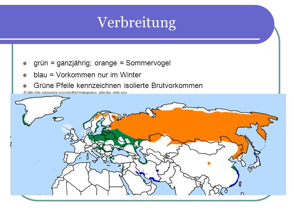 Verbreitung grün = ganzjährig; orange = Sommervogel blau = Vorkommen nur im Winter Grüne Pfeile kennzeichnen isolierte Brutvorkommen © http://de.wikip