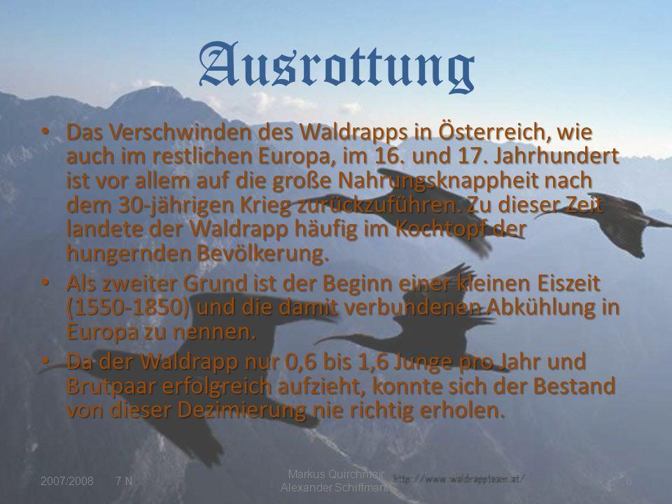 Ausrottung Das Verschwinden des Waldrapps in Österreich, wie auch im restlichen Europa, im 16.