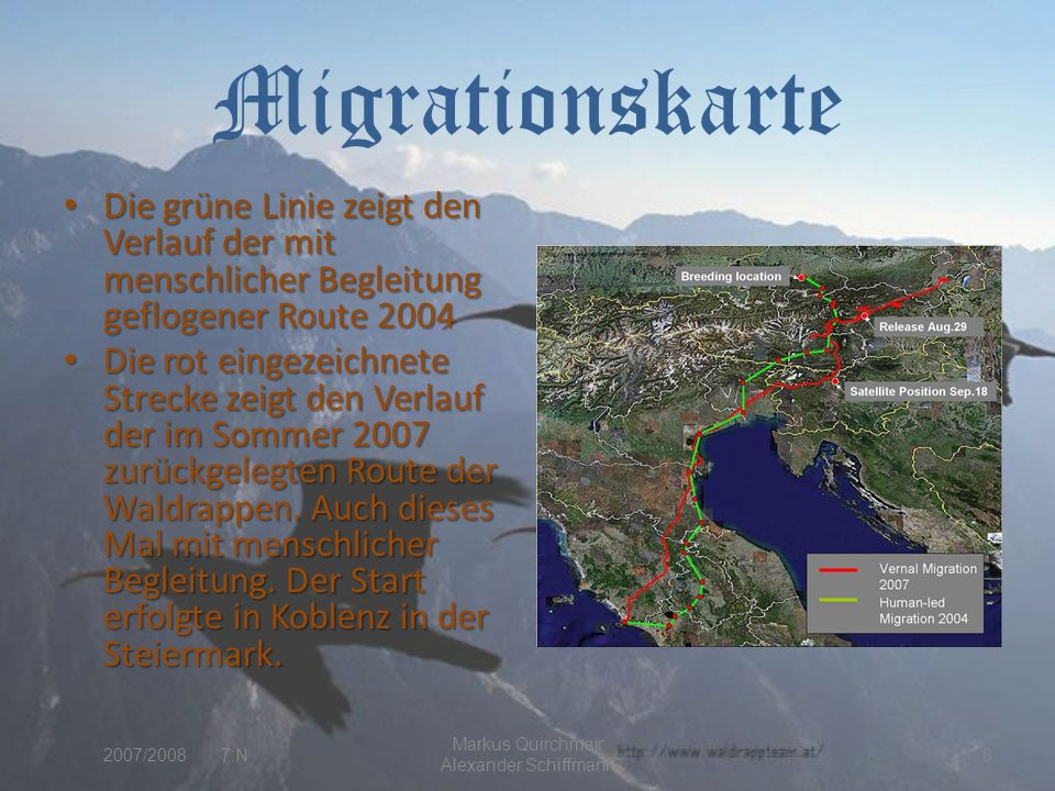 Migrationskarte Die grüne Linie zeigt den Verlauf der mit menschlicher Begleitung geflogener Route 2004 Die grüne Linie zeigt den Verlauf der mit menschlicher Begleitung geflogener Route 2004 Die rot eingezeichnete Strecke zeigt den Verlauf der im Sommer 2007 zurückgelegten Route der Waldrappen.