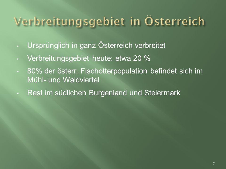 Ursprünglich in ganz Österreich verbreitet Verbreitungsgebiet heute: etwa 20 % 80% der österr.